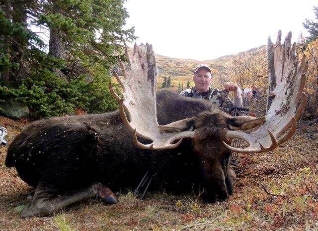 raffle-pic-moose